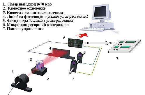 laska-t4.jpg